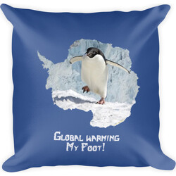 Global Warming My Foot! Square Pillow