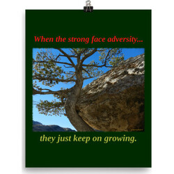 When the strong face adversity  poster