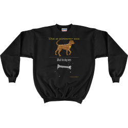 Black Canis Major Sweatshirt