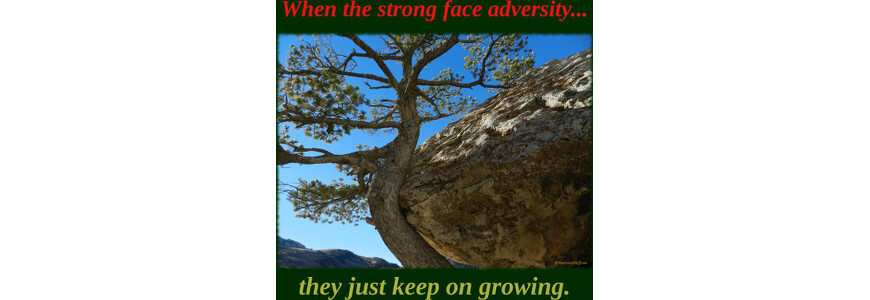 When the strong face adversity